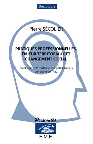 Couverture Pratiques professionnelles, enjeux territoriaux et changement social